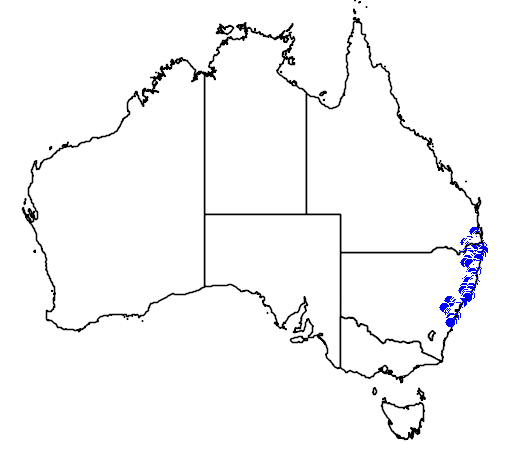 distribution map showing range of Saltuarius swaini in Australia