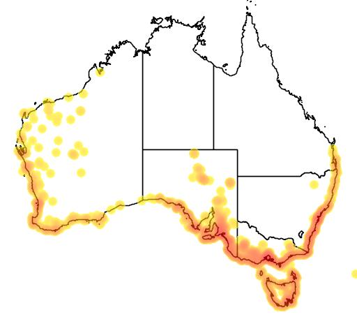 distribution map showing range of Samolus repens in Australia