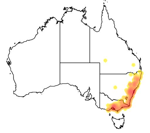 distribution map showing range of Saproscincus mustelinus in Australia