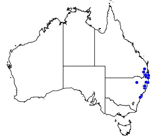 distribution map showing range of Sarcochilus hartmannii in Australia