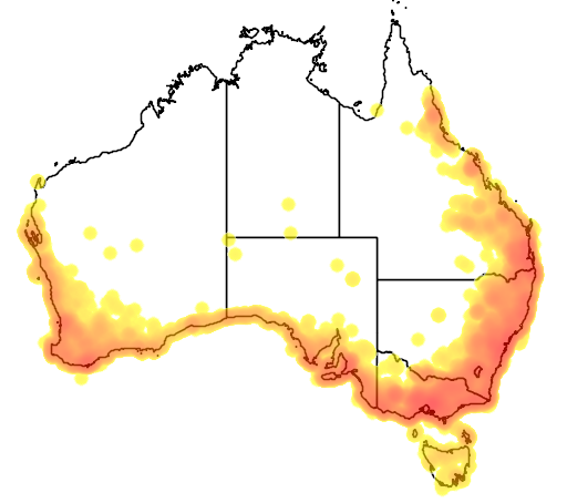 distribution map showing range of Sericornis frontalis in Australia