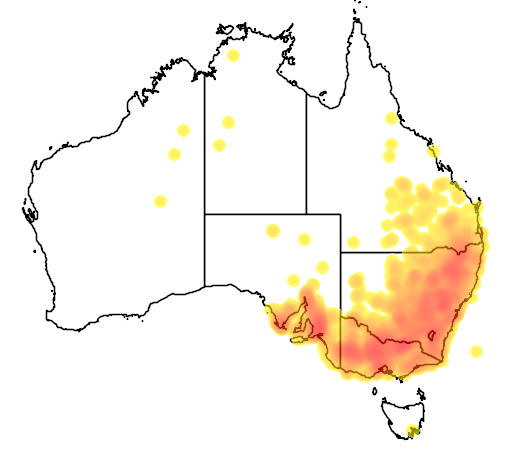 distribution map showing range of Stagonopleura guttata in Australia