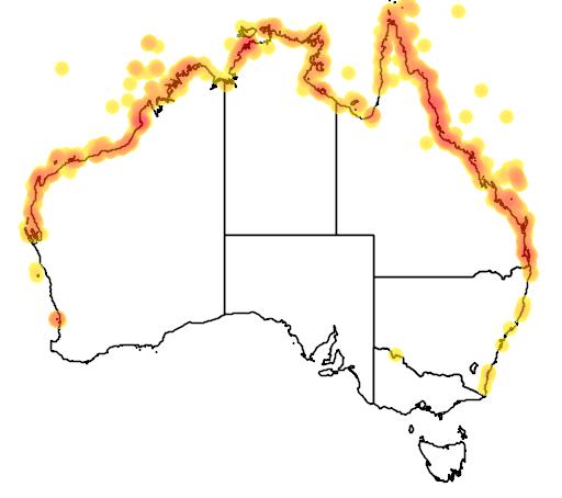 distribution map showing range of Sterna bengalensis in Australia