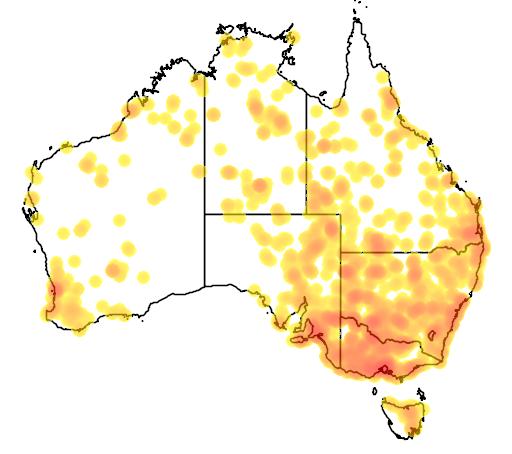 distribution map showing range of Stictonetta naevosa in Australia