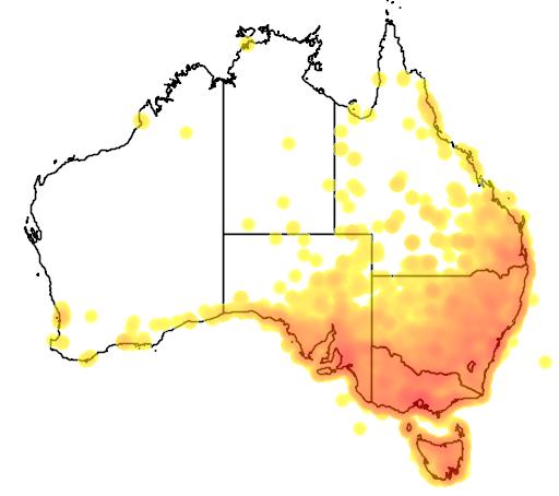 distribution map showing range of Sturnus vulgaris in Australia