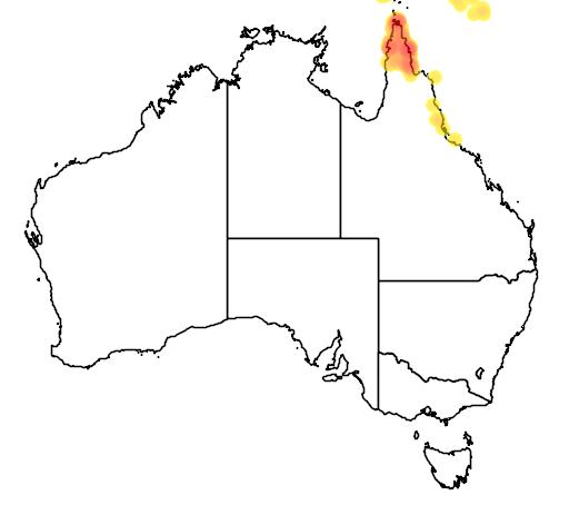 distribution map showing range of Syma torotoro in Australia