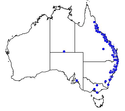 distribution map showing range of Syzygium australe in Australia