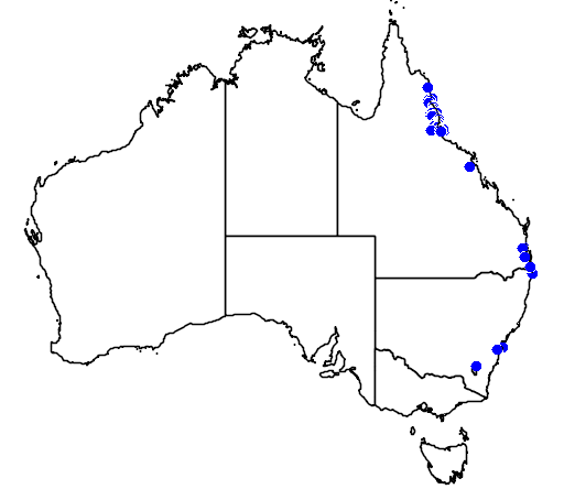distribution map showing range of Syzygium wilsonii in Australia