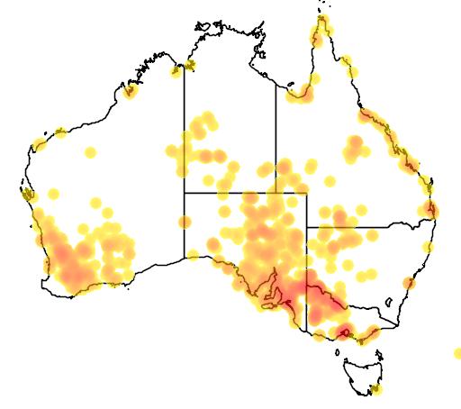 distribution map showing range of Tecticornia pergranulata in Australia