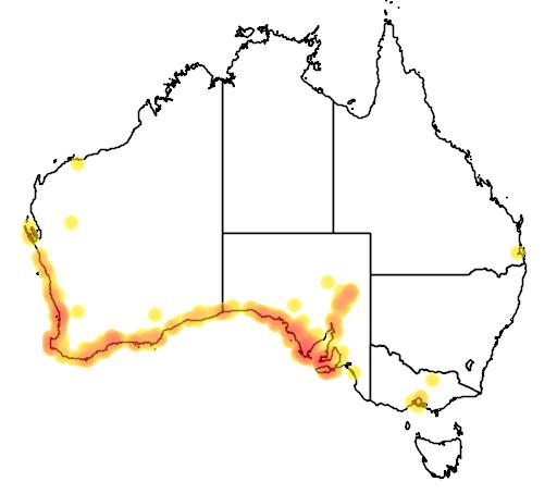 distribution map showing range of Templetonia retusa in Australia