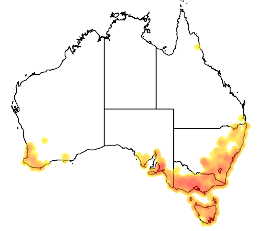 distribution map showing range of Thelymitra pauciflora in Australia