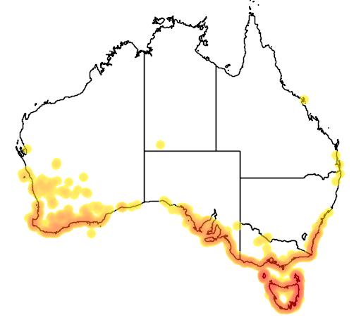 distribution map showing range of Thinornis rubricollis in Australia