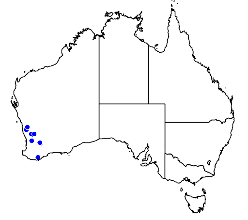 distribution map showing range of Thomasia tenuivestita in Australia