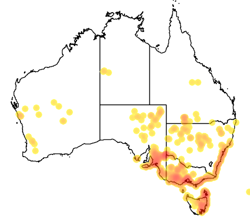 distribution map showing range of Thyridia repens in Australia