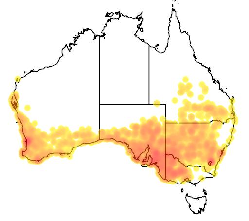 distribution map showing range of Tiliqua rugosa in Australia