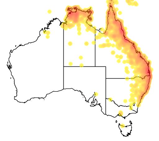 distribution map showing range of Todiramphus macleayii in Australia