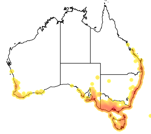 distribution map showing range of Triglochin striata in Australia