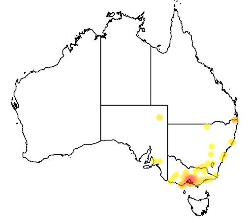distribution map showing range of Turdus philomelos in Australia