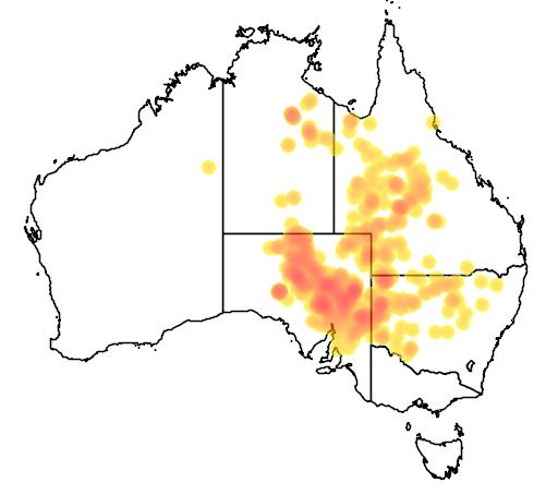 distribution map showing range of Tympanocryptis tetraporophora in Australia