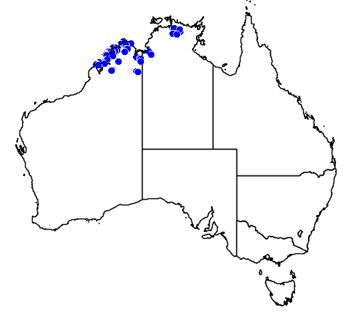 distribution map showing range of Varanus glauerti in Australia