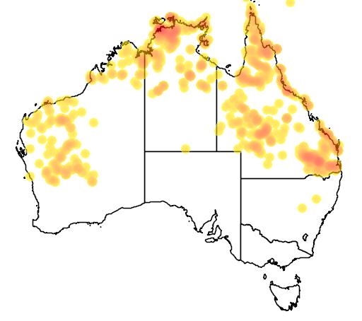 distribution map showing range of Varanus panoptes in Australia