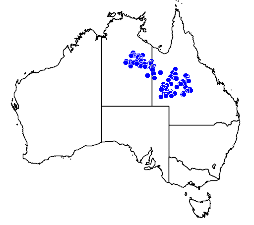 distribution map showing range of Varanus spenceri in Australia