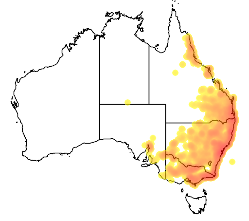 distribution map showing range of Varanus varius in Australia