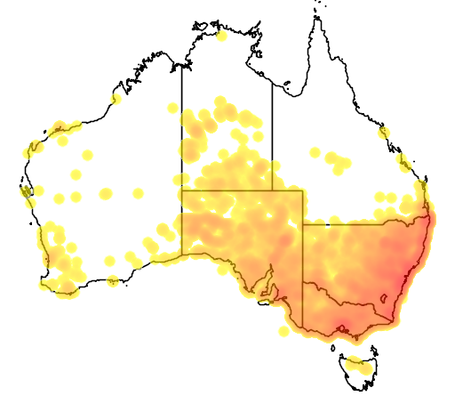 distribution map showing range of Vulpes vulpes in Australia