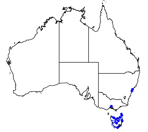 distribution map showing range of Westringia brevifolia in Australia