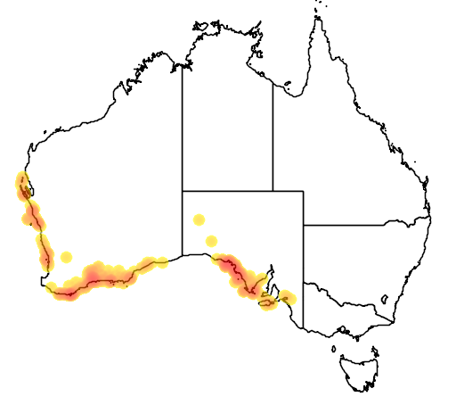 distribution map showing range of Westringia dampieri in Australia