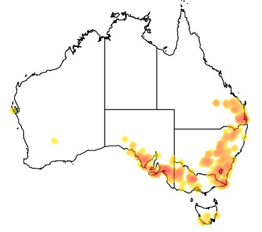 distribution map showing range of Westringia eremicola in Australia
