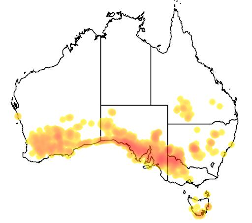 distribution map showing range of Westringia rigida in Australia