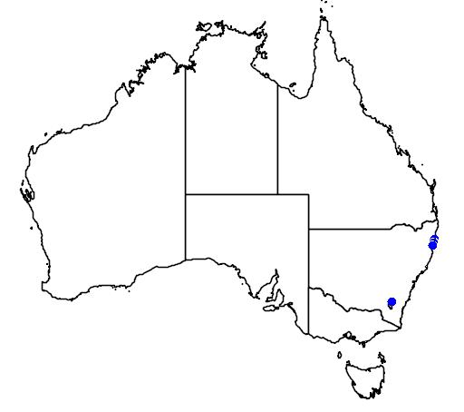 distribution map showing range of Zieria prostrata in Australia