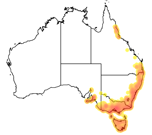 distribution map showing range of Zoothera lunulata in Australia
