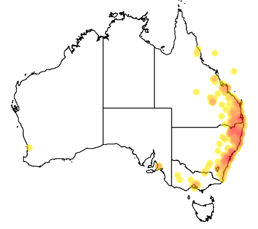 distribution map showing range of Acacia fimbriata in Australia