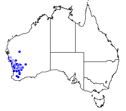 distribution map showing range of Acacia restiacea in Australia