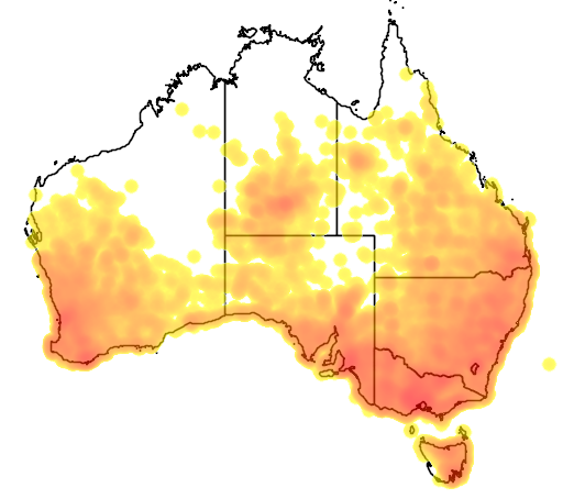 distribution map showing range of Acanthiza chrysorrhoa in Australia