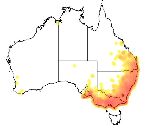 distribution map showing range of Acanthiza lineata in Australia