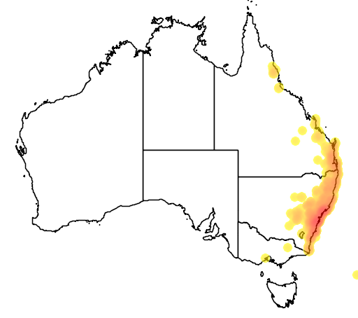 distribution map showing range of Acianthus fornicatus in Australia