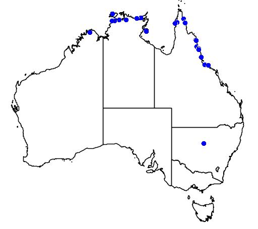 distribution map showing range of Acrochordus granulatus in Australia