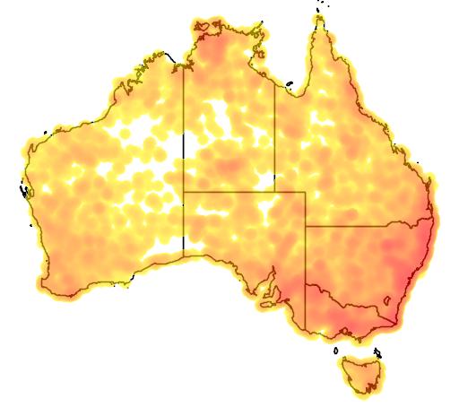 distribution map showing range of Aegotheles cristatus in Australia