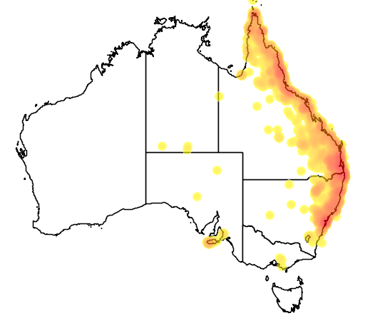 distribution map showing range of Alectura lathami in Australia