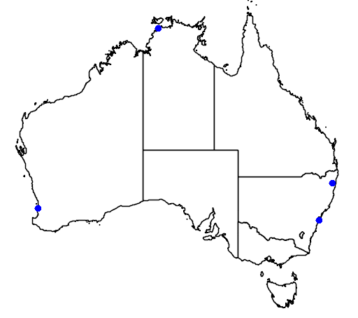 distribution map showing range of Anas acuta in Australia
