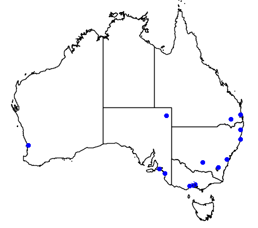 distribution map showing range of Anas clypeata in Australia