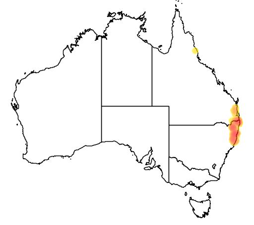distribution map showing range of Anopterus macleayanus in Australia