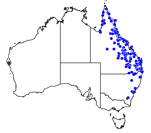 distribution map showing range of Antaresia maculosa in Australia