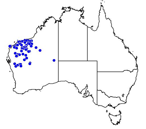 distribution map showing range of Antaresia perthensis in Australia