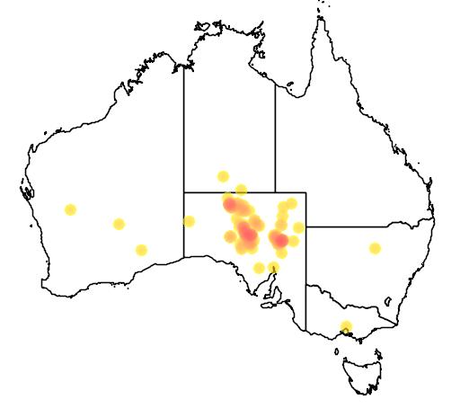 distribution map showing range of Aphelocephala pectoralis in Australia