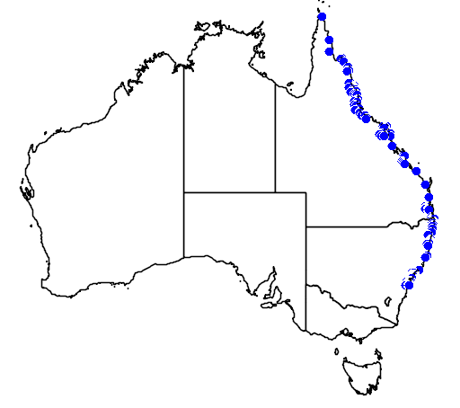 distribution map showing range of Archontophoenix alexandrae in Australia