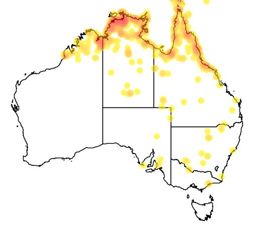 distribution map showing range of Ardea picata in Australia